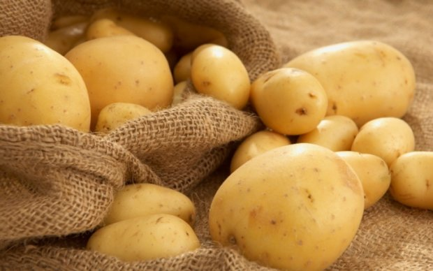 Дивовижні факти про картоплю, які варто знати
