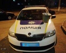 Полицейский автомобиль, Информатор
