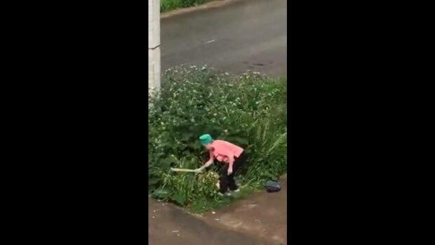 С*кс и ненависть в Ставрополе: горе-любовники в кустах получили доской от боевой бабули