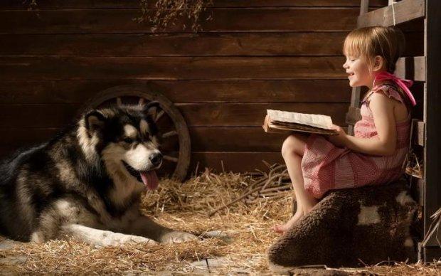 Мімімішність зашкалює: зграя псів стала няньками для дітей