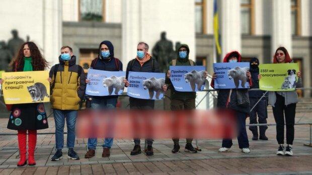 Мітинг, фото: Pavlovsky.NEWS