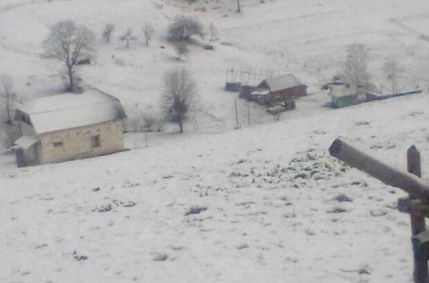 Сніг у Карпатах, фото: Телеграм / PN