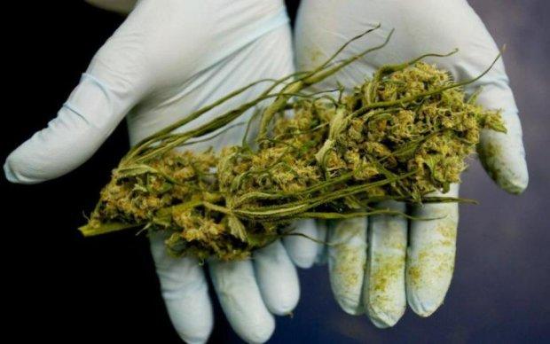 Трагические истории детей заставили власть легализировать марихуану