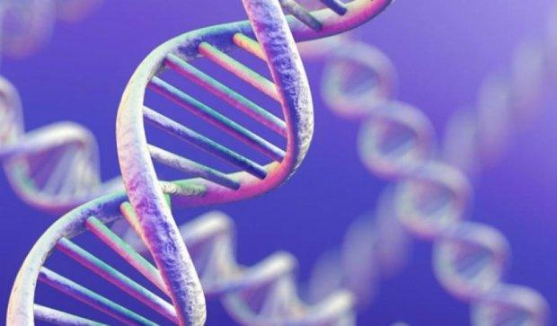 Успешность человека зависит от генов