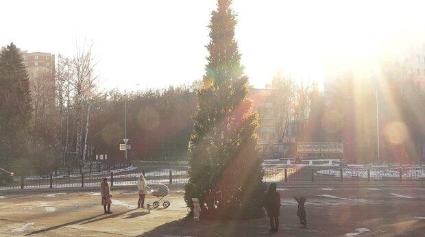 Президент запроваджує цілодобову комендантську годину на Новий рік: з 31 грудня по 4 січня