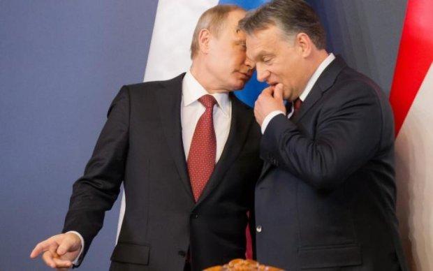 """Закон об образованнии вскрыл все """"путинские консервы"""" в Европе?"""