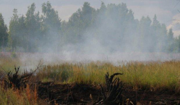 Сто гектарів торфовищ палає у Волинській області