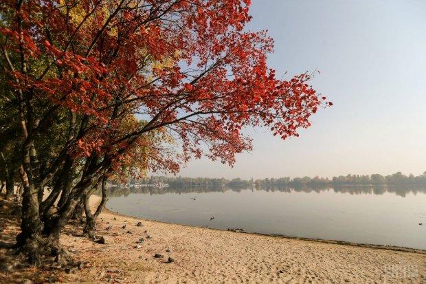 Погода на 31 октября: второй месяц осени оригинально попрощается с украинцами