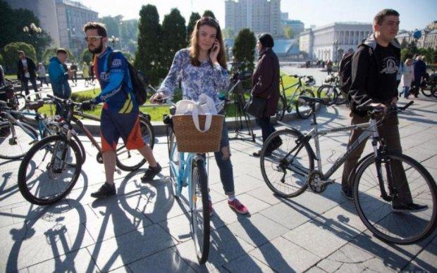 Дорожников законом заставят дать зеленый свет велосипедистам