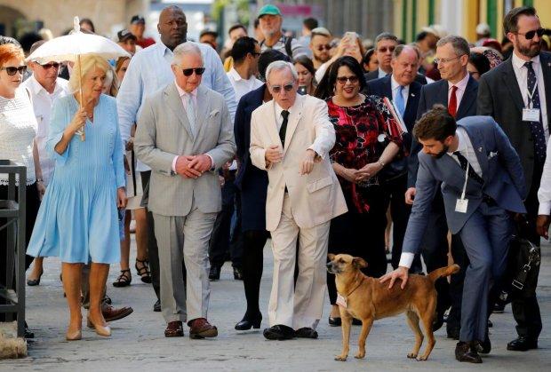 """Веселый дедушка принц Чарльз угощает женщин """"шерстью собаки"""": будут жить долго и счастливо"""