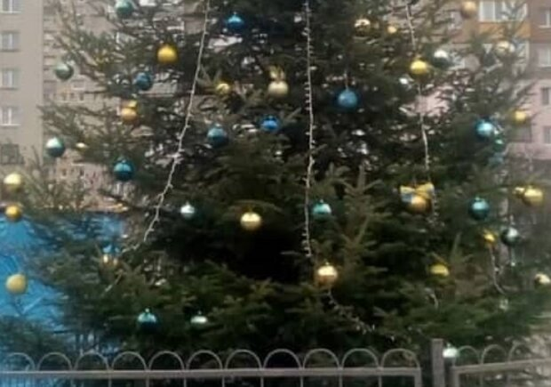 Вандалы украли игрушки с елки, фото: Facebook Калушский формат