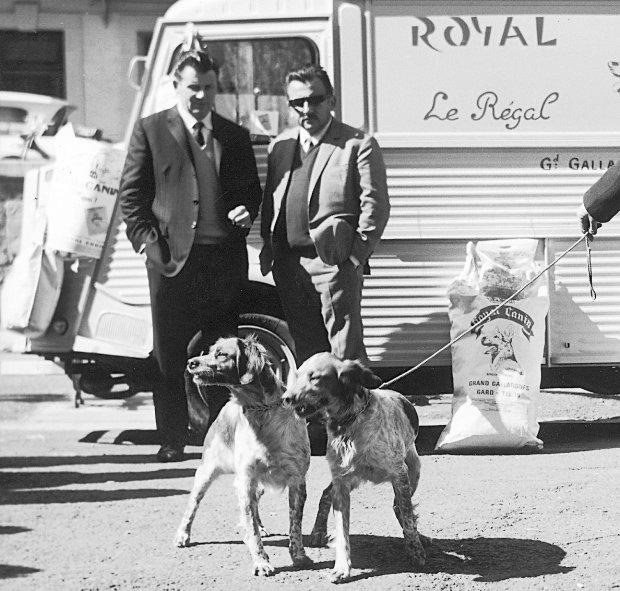 Производитель кормов Royal Canin: Польша vs Франция или развенчание одного мифа
