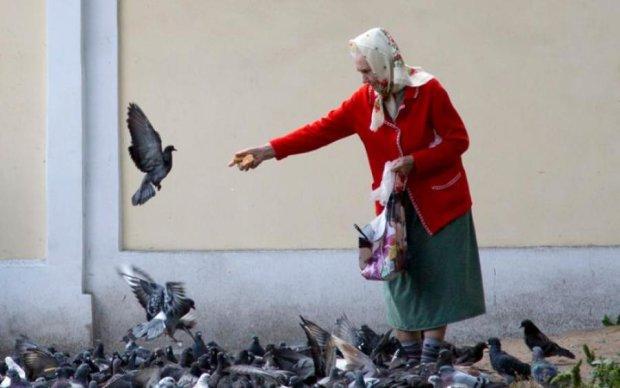 Пелагея Заступница 17 мая: чего категорически нельзя делать