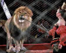 Национальный цирк Украины, фото: Вечерний Киев