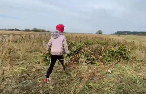 Украинские дети остались без школьных занятий, скриншот: YouTube