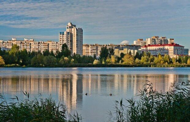 Потопельник вагою в півтони: у Києві з озера витягли коня
