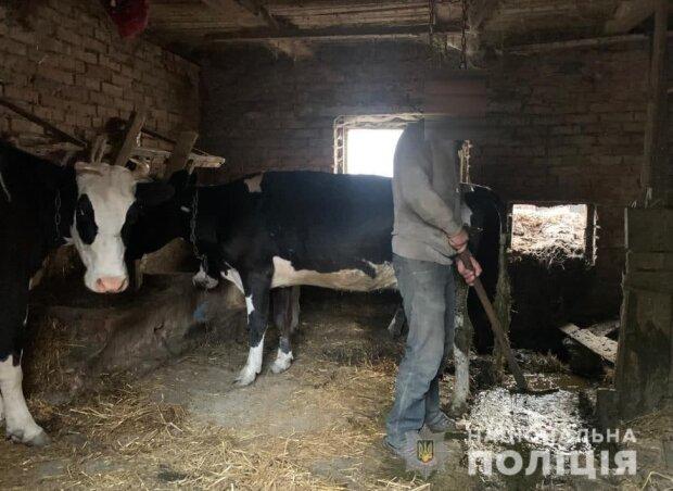 Держала в сарае: жертвами украинской пенсионерки стали трое мужчин