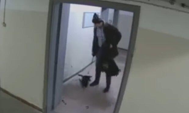 Нелюд, який жорстоко побив та викинув беззахисне цуценя, скрін з відео