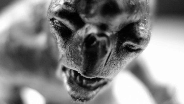 Жители небольшой деревушки наткнулись на странное существо: оно совершенно лысое, а нижняя челюсть меньше верхней
