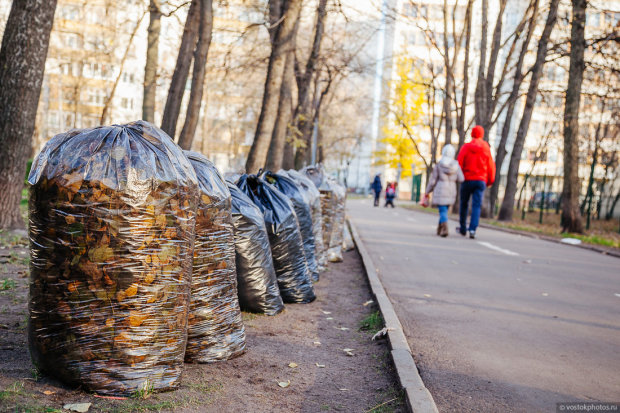 Смертельні хвороби, кінець екології та штрафи: : те, чим в Україні займаються прямо зараз - вже поза законом