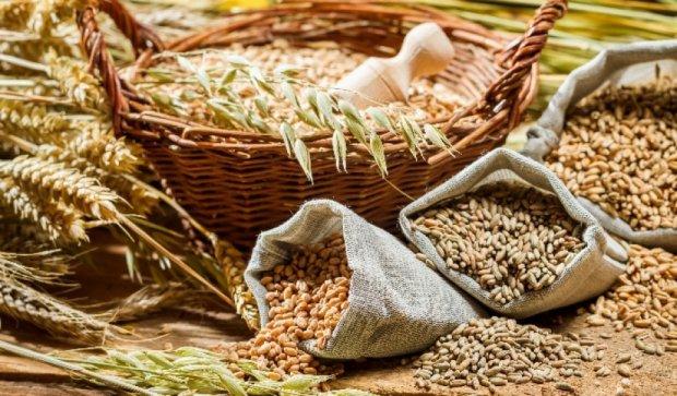 Зріс експорт українських виробів із зерна та борошна до ЄС - Павленко