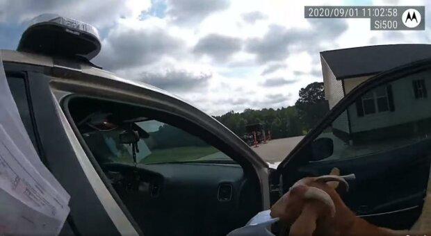 Коза поліцейські авто, скріншот