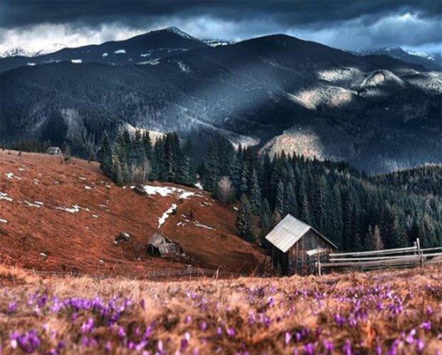 Карпати, фото  Олександр Калінін