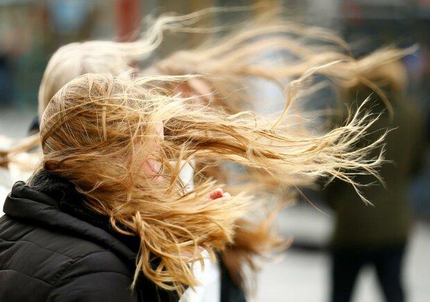 вітер, фото: reuters