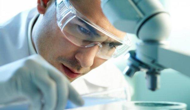 Вчені вперше показали на відео процес зародження життя: від однієї клітини до цілого організму