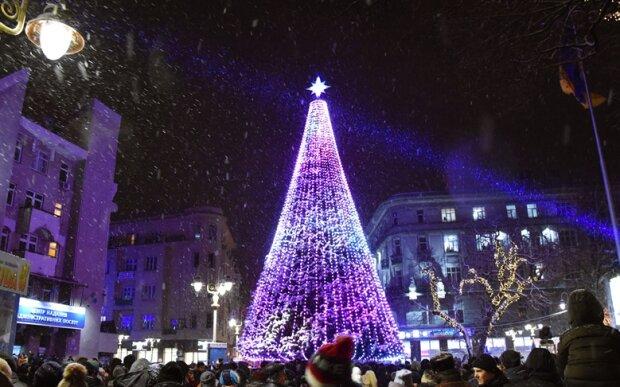 Первый пошел: в Ивано-Франковске уже устанавливают новогоднюю елку, - вдохновляющие кадры