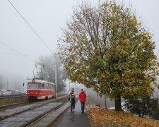 Погода в Украине, фото: REUTERS