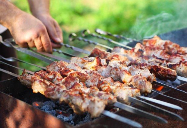 Пикник на майские праздники: как выбрать идеальное мясо для шашлыка