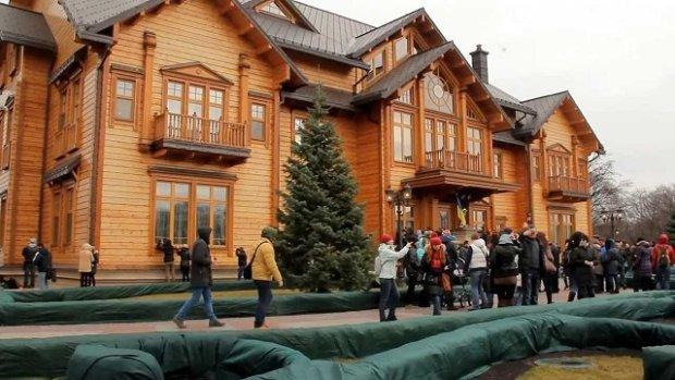 Зеленському запропонували зайняти місце Януковича у Межигір'ї: страуси зачекалися