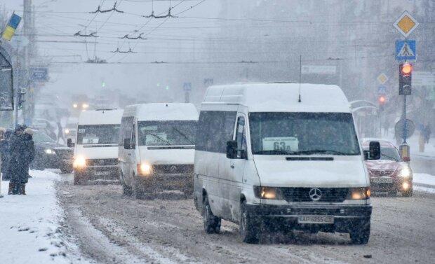 Харьковский маршрутчик повторил скандальный трюк Брагаря, - как заплатить за проезд собакой