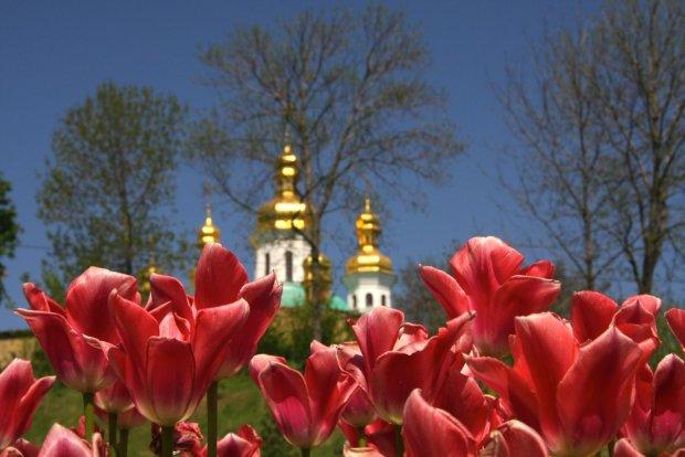 Погода на 25 квітня: Чистий четвер принесе літню спеку