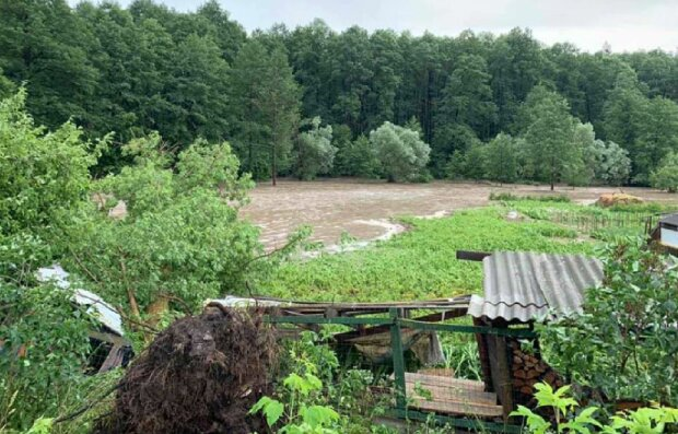 Негода на Київщині, фото: Telegram