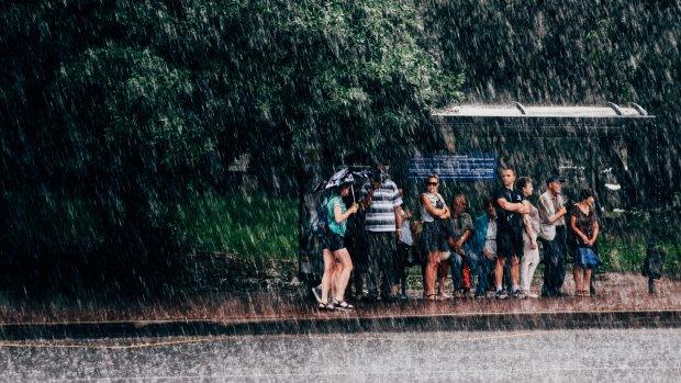 Погода в Киеве на 4 июня: проделки стихии заставят забыть о лете