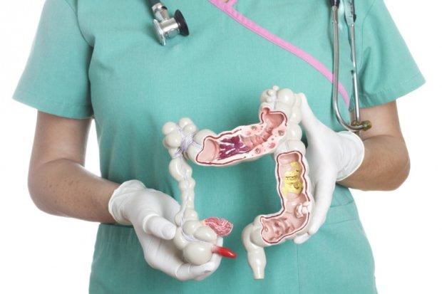 Ученые раскрыли тайну здорового кишечника