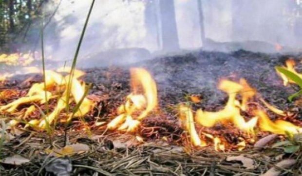 ДСНС предупреждает о чрезвычайной пожарной опасности
