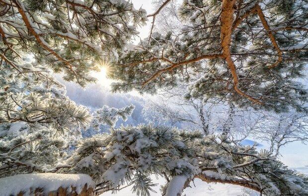 Погода в Україні, фото: goodfon