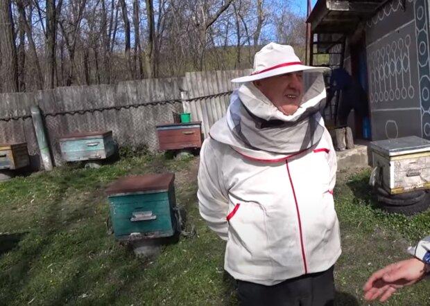 Тернополяне получат по 60 тысяч за пчел
