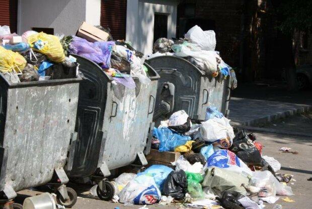 """Київ перетворюється на гігантський блошиний ринок, """"свині"""" замість людей: кадри сміттєвого Апокаліпсису"""
