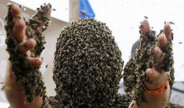 """""""Пчелиные"""" войны загнали украинцев в суды"""