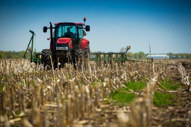 Крупные агрохолдинги лишатся 300 млн грн дотаций