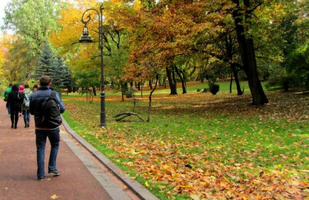 Івано-Франківськ, парк, іллюстрація, погода