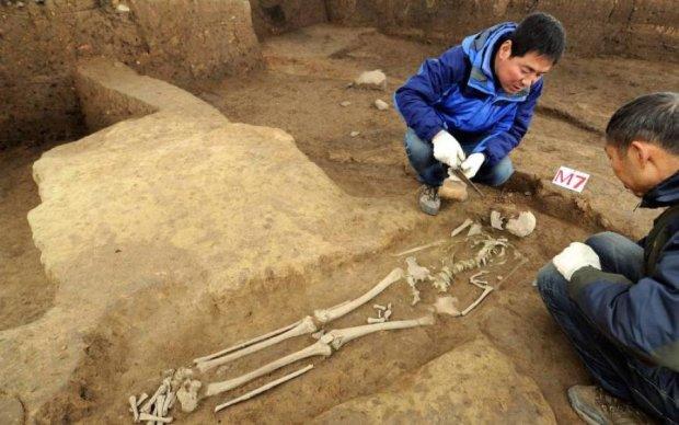 История перевернулась: древнейший след человека нашли в самом неожиданном месте