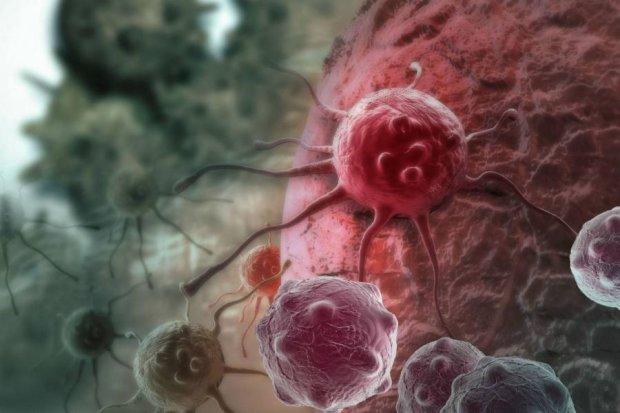 Народна медицина: вчені виявили древнєкитайське зілля від раку