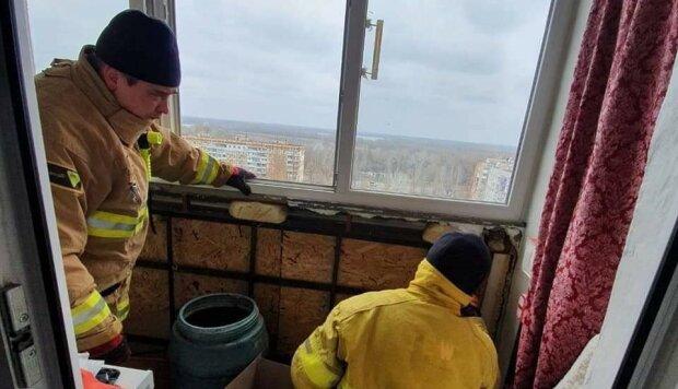 В Днепре балкон оккупировали сотни маленьких дракул: прятались под обшивкой