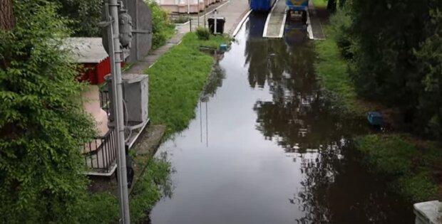 У ряді українських міст стався справжній потоп: ловлять карасів руками в парках