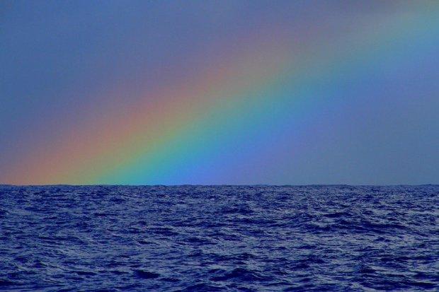 Рыбак выловил в открытом океане маленького мальчика: поразительная история